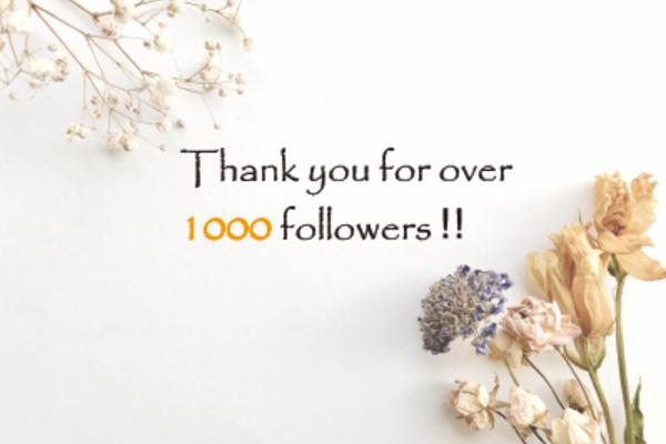 Thank you 1,000 Followers‼